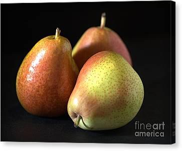 Pears Canvas Print by Joy Watson