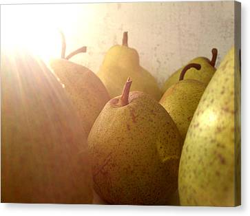 Canvas Print featuring the photograph Pears by Lucy D