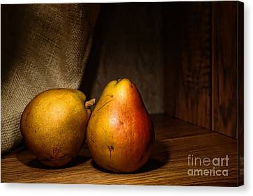 Pears Canvas Print by Olivier Le Queinec