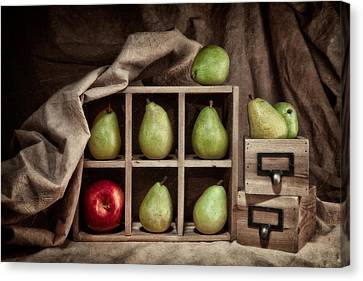 Pears On Display Still Life Canvas Print by Tom Mc Nemar