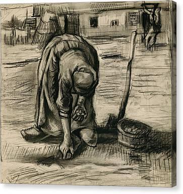 Peasant Woman Planting Potatoes Canvas Print
