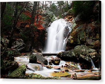 Peavine Falls In Autumn Canvas Print by Shelby  Young
