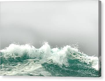 Pebble Beach In The Fog Canvas Print by Artist and Photographer Laura Wrede