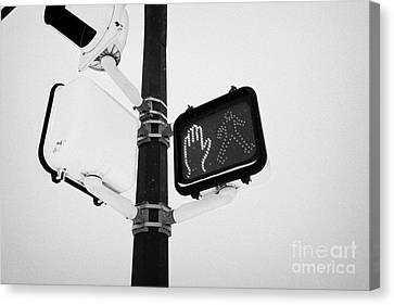 Crosswalk Canvas Print - pedestrian crosswalk red stop signal in the snow Saskatoon Saskatchewan Canada by Joe Fox