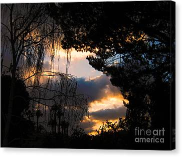 Canvas Print featuring the photograph Peek A Boo Sunset by Janice Westerberg