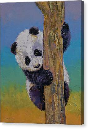 Michael Canvas Print - Peekaboo by Michael Creese