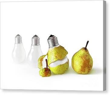 Peeled Bulb Canvas Print by Carlos Caetano