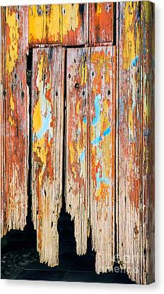 Panel Door Canvas Print - Peeling Door by Carlos Caetano