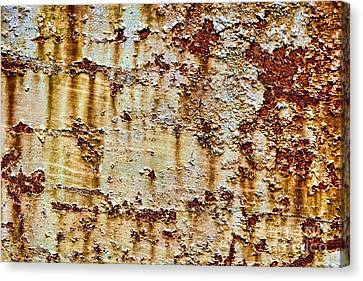 Peeling  Canvas Print by Olivier Le Queinec