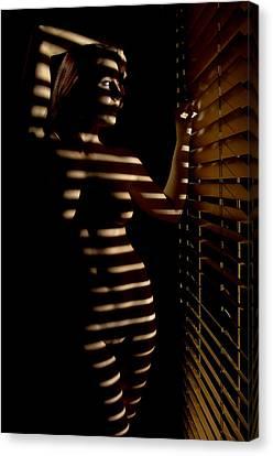 Peeping Tom Canvas Print by Adam Chilson