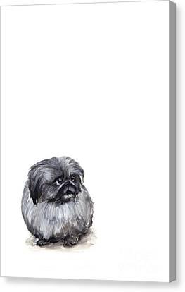Pekingese - Pekinese Canvas Print by Barbara Marcus