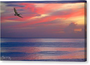 Canvas Print featuring the photograph Pelican At Sunset by Mariarosa Rockefeller