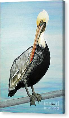 Canvas Print featuring the painting Pelican At The Marina  by Jimmie Bartlett
