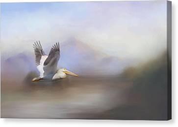 Pelican In Flight  Canvas Print by Betty  Pauwels