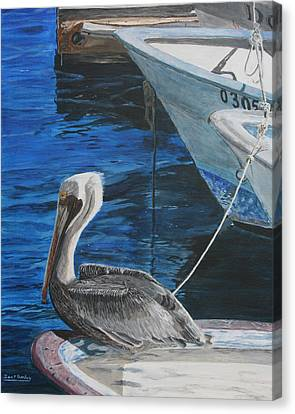 Canvas Print featuring the painting Pelican On A Boat by Ian Donley