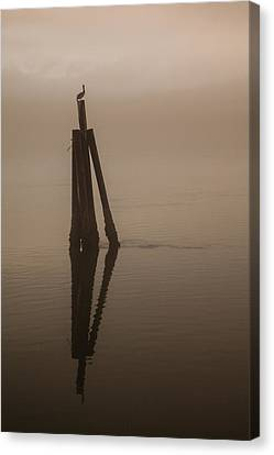 Pelican On A Stick Canvas Print