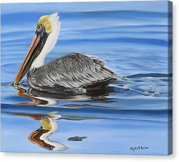 Pelican Ripples Canvas Print by Phyllis Beiser