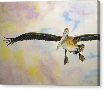 Canvas Print featuring the painting Pelican by Stan Tenney