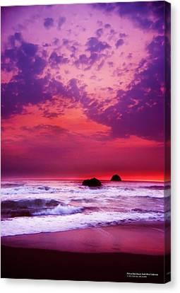 Pelican State Beach California 02 Canvas Print by Rafael Escalios