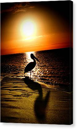 Pelican Sunrise Canvas Print by Yew Kwang
