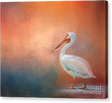 Pelican Walk Canvas Print