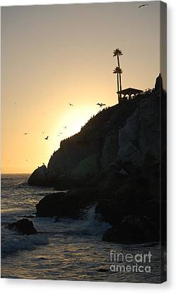 Pelicans Gliding At Sunset Canvas Print by Debra Thompson