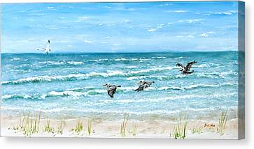 Pelicans On Crescent Beach Canvas Print by Bruce Alan