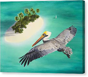 Pelicans Perspective Canvas Print by Carolyn Steele