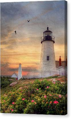 Pemaquid Point Canvas Print by Lori Deiter