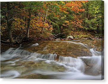 Pemigewasset River Cascades In Autumn Canvas Print by Juergen Roth