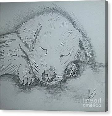 Pencil Puppy Canvas Print