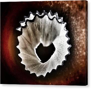Pencil Shaving Heart Canvas Print by Marianna Mills