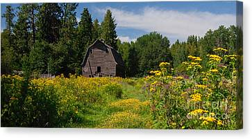 Canvas Print featuring the photograph Pend Oreille Barn by Sam Rosen