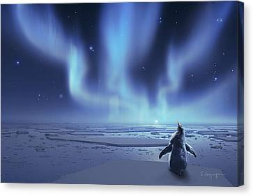 Graphics Canvas Print - Penguin Dreams by Cassiopeia Art