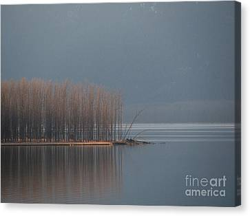 Peninsula Of Trees Canvas Print by Leone Lund