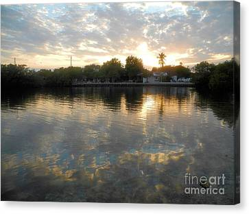 Pennekamp Canvas Print - Pennekamp Sunset by Adam Jewell
