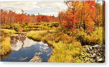 Pennsylvania Autumn Pocono Mountain Stream Canvas Print