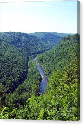 Pennsylvania Grand Canyon 3 Canvas Print by Tom Doud