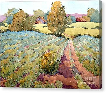 Pastoral Vineyard Canvas Print - Pennsylvania Idyll by Joyce Hicks