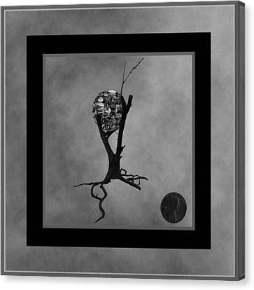 Penny For Your Thoughts Bw Canvas Print by Barbara St Jean