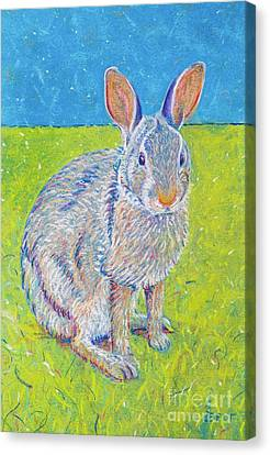 Penny The Rabbit At Snickerhaus Garden II Canvas Print by Christine Belt
