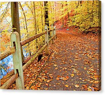 Pennypack Trail Philadelphia Fall Canvas Print
