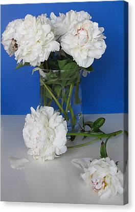 Canvas Print featuring the photograph Peonies 1 by Margaret Newcomb