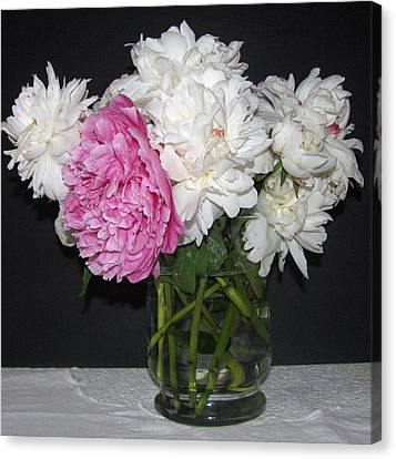 Canvas Print featuring the photograph Peonies Bouquet 4 by Margaret Newcomb