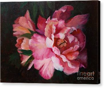 Peonies No 8 The Painting Canvas Print by Marlene Book