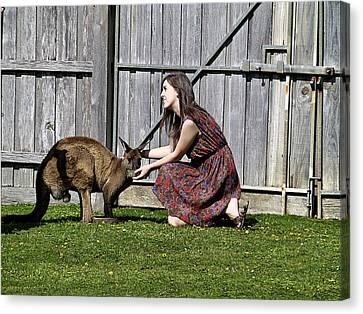 People And Kangaroo Canvas Print by Girish J