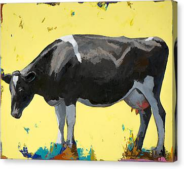 People Like Cows #12 Canvas Print by David Palmer