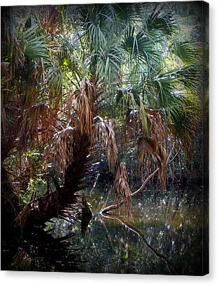 Pepper Creek Palm Canvas Print by Sheri McLeroy
