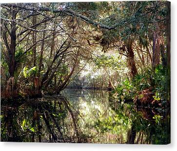 Pepper Creek Canvas Print by Sheri McLeroy