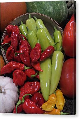 Peppers Etc. Canvas Print by Christina Shaskus